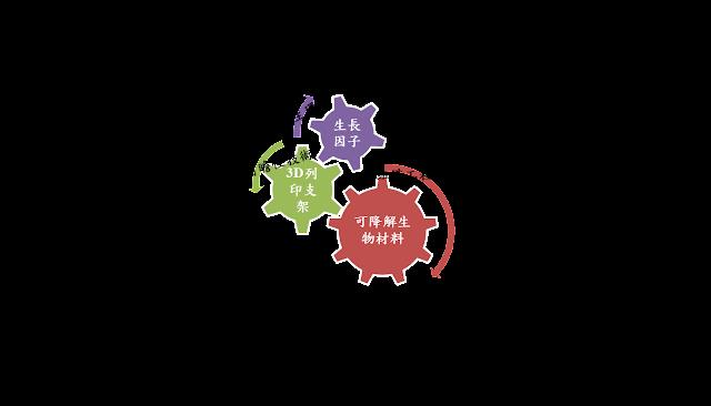 前瞻醫材商業模式圖