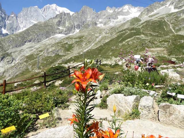 giardino botanico pavillon sotto monte bianco