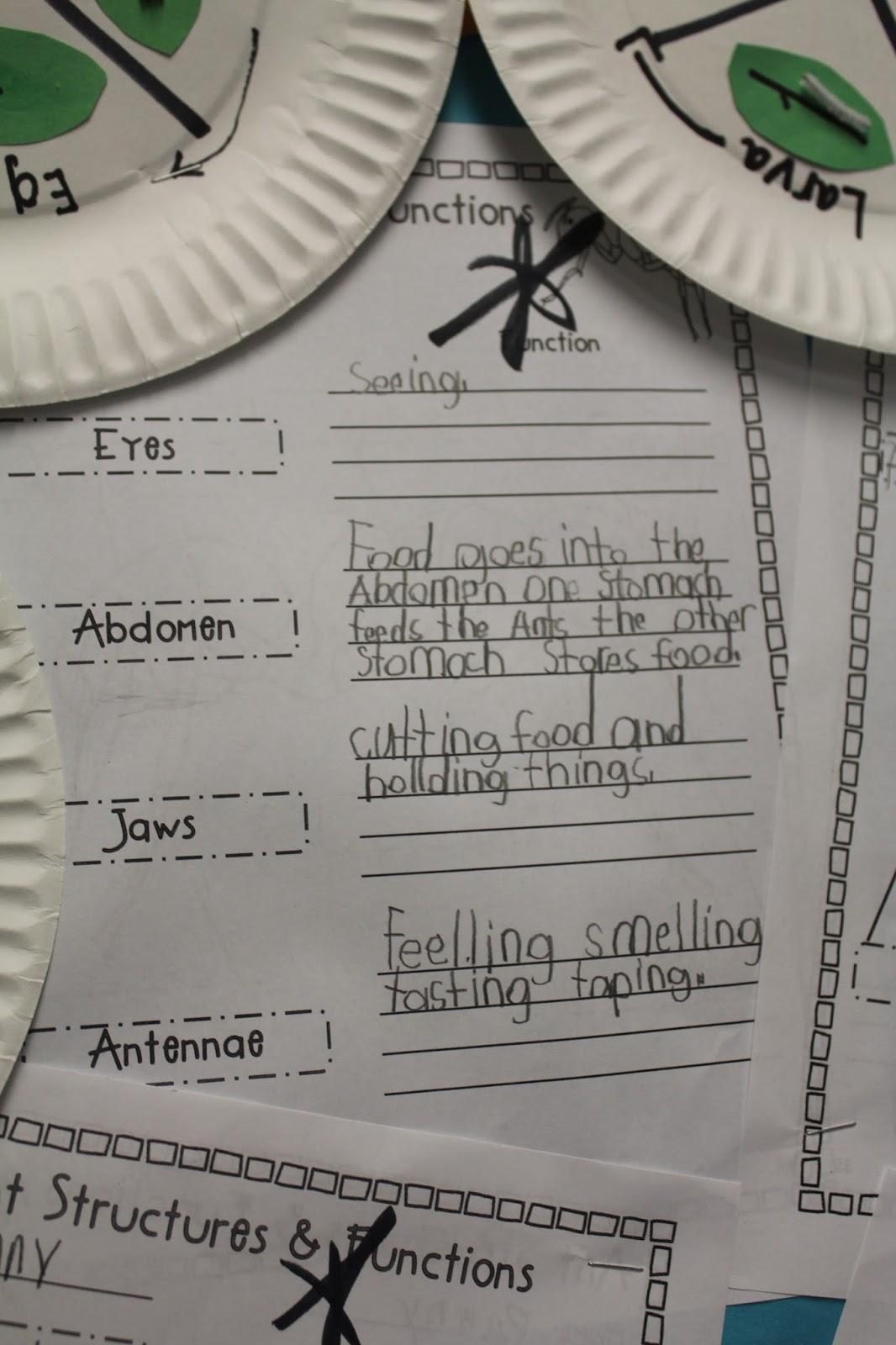 The Razzle Dazzle Classroom Science And Writing Fun