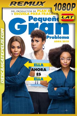 Pequeño gran problema (2019) Remux 1080p Latino – Ingles