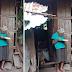 Isang Lola na Naninirahan sa Kanyang Munting Tahanan Kahit Walang Kuryente, Nakitang Nagbabasa ng Bibliya.