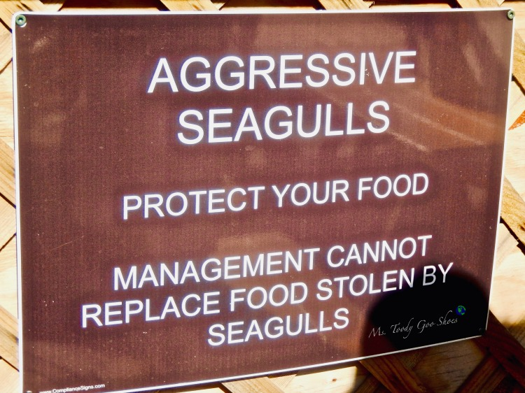 I love a clever sign, don't you? Amusing Travel Signs From Around The World | Ms. Toody Goo Shoes