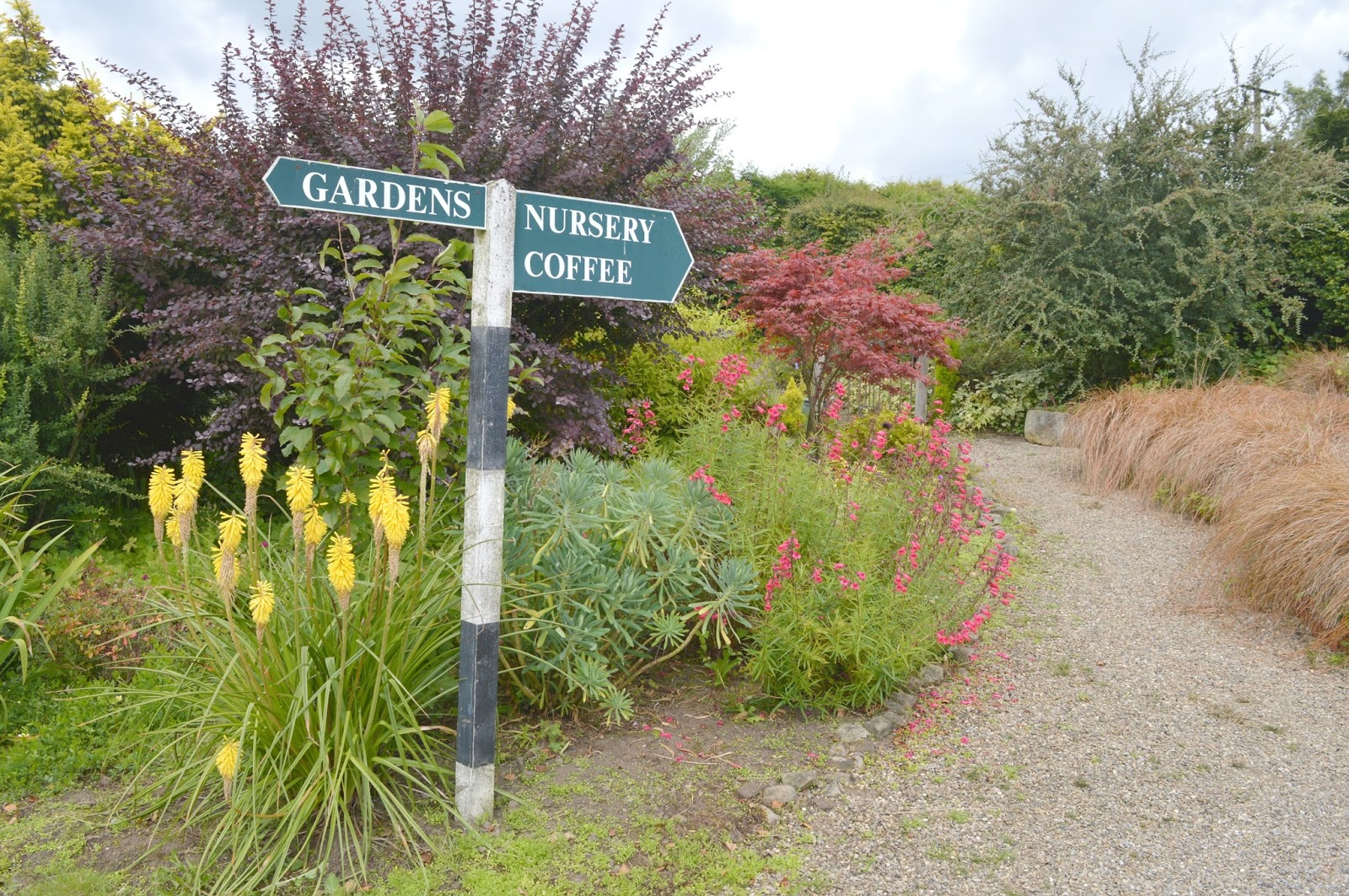Gateshead's Great Outdoors - Birkheads Secret Gardens Nursery and Coffee Shop
