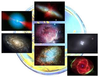 Cosmos Palette