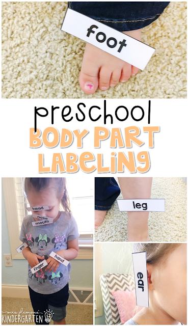 Read about the parts of the body, then use word cards to label each body part. Great for tot school, preschool, or even kindergarten!