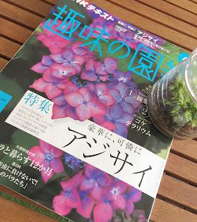 趣味の園芸6月号