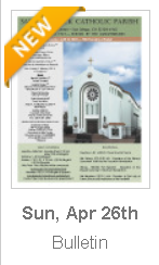 https://parishesonline.com/find/pastor-of-saint-patrick-catholic-parish-san-diego-california-corporation-sole/bulletin/file/05-0628-20200426B.pdf