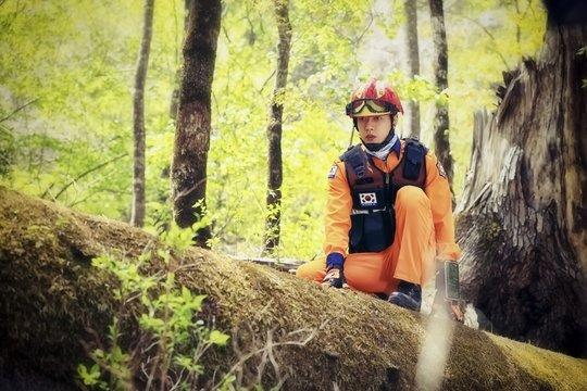 park hae jin forest drama