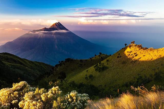 Merbabu, Sabana, Mendaki