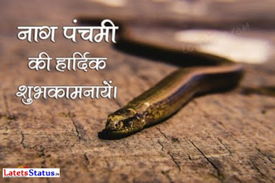 Happy Nag Panchami Status in Hindi