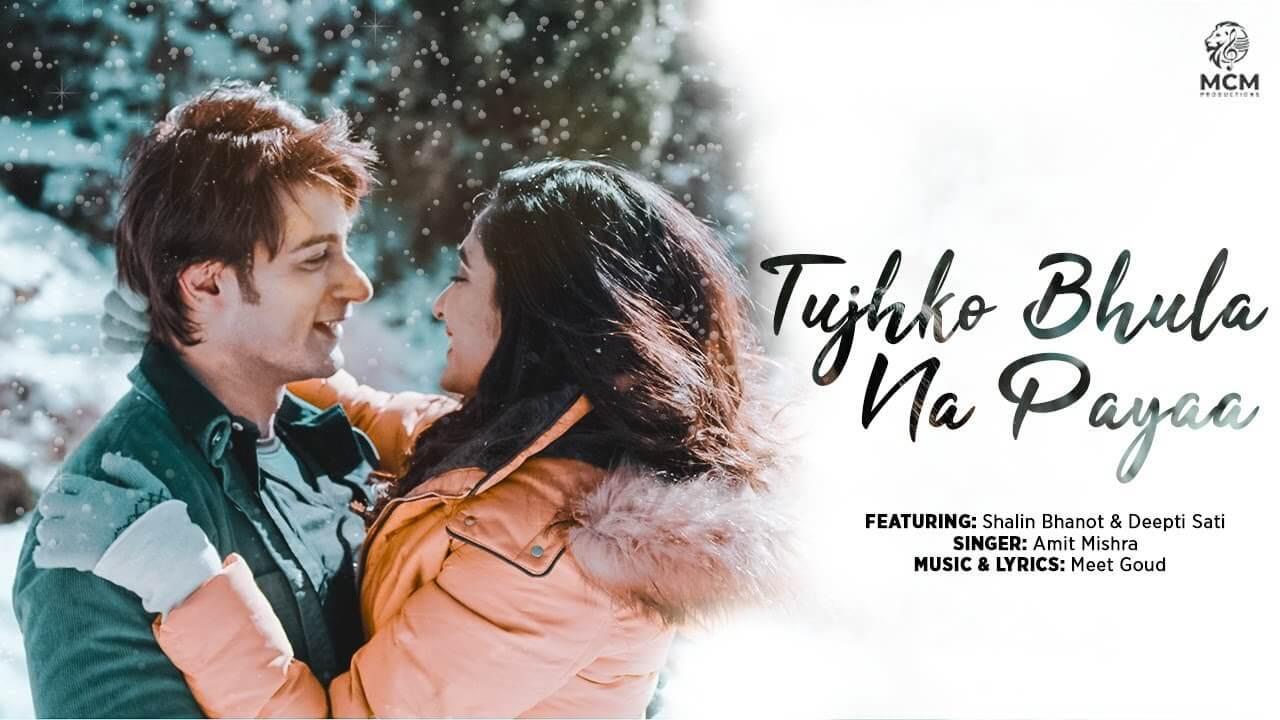 Tujhko Bhula Na Paya lyrics in Hindi