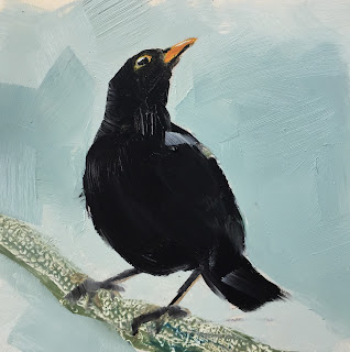blackbird, daily painting by Philine van der Vegte