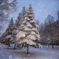 волшебный снегопад