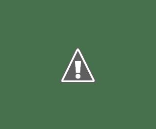 Coronavirus Cases in Maharashtra