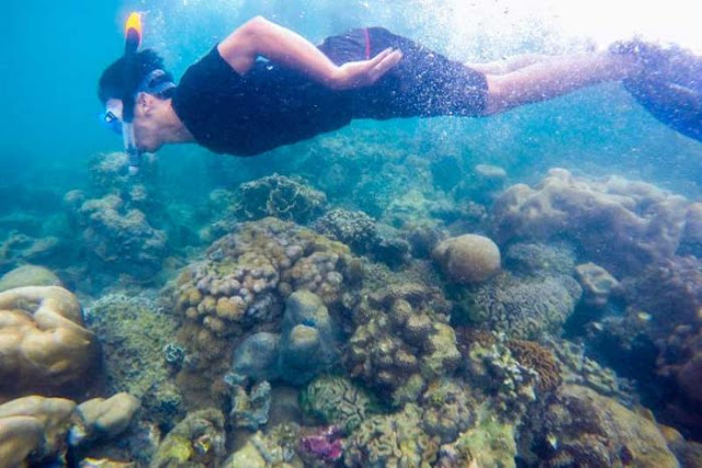 WA 081378363090 Paket Trip Pantai Labun Snorkeling and Diving