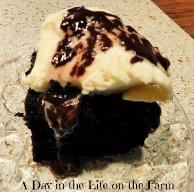 Deep Chocolate Mint Snack Cake