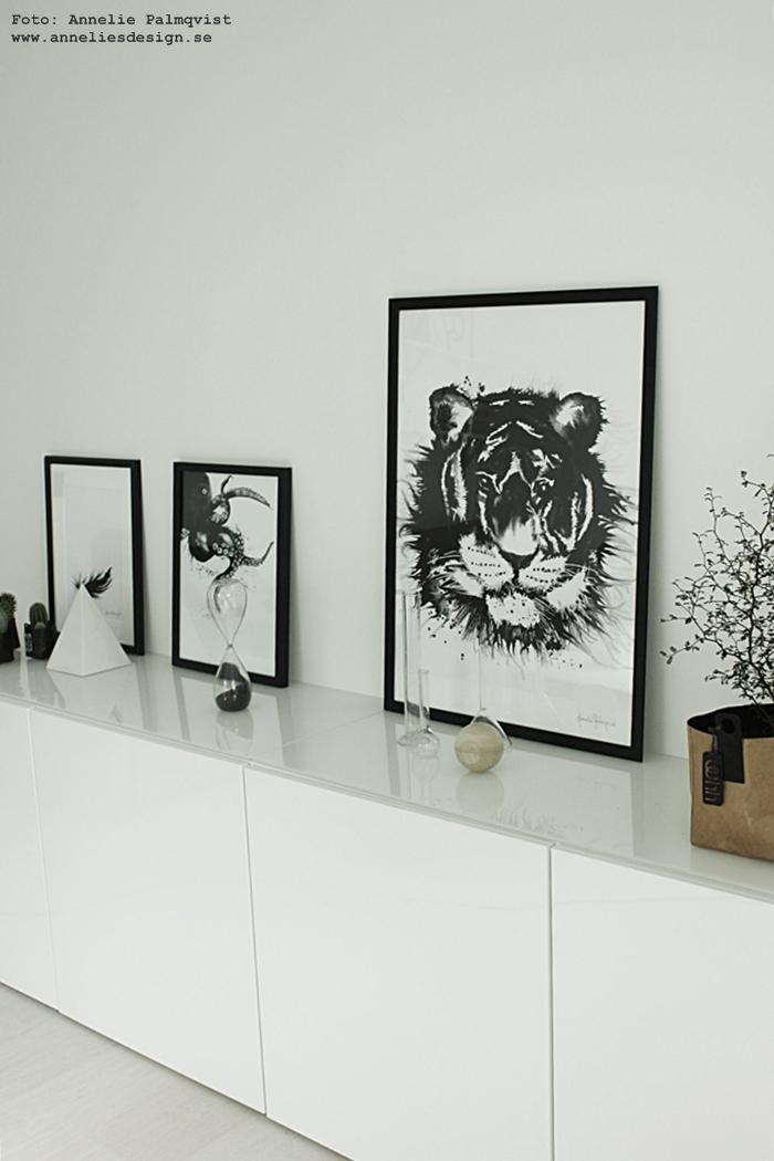 konsttryck, poster, bläckfisk, bläckfiskar, svart fjäder, fjädrar, tiger, tigrar, tavla, tavlor, poster, print, prints, svartvitt, svart och vitt, svartvita, vitt, vit, bestå, ikea, annelies design, webbutik, webbutiker, webshop, inredning, Oohh kruka, krukor, kaktus, kaktusar, timglas,