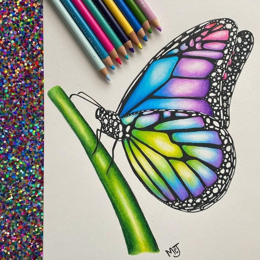 03-Spectrum-of-light-butterfly-Morgan-Johnson-www-designstack-co