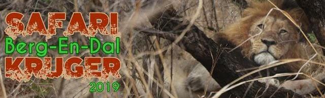 Safari-por-libre-Kruger-Malelana-Berg-En-Dal