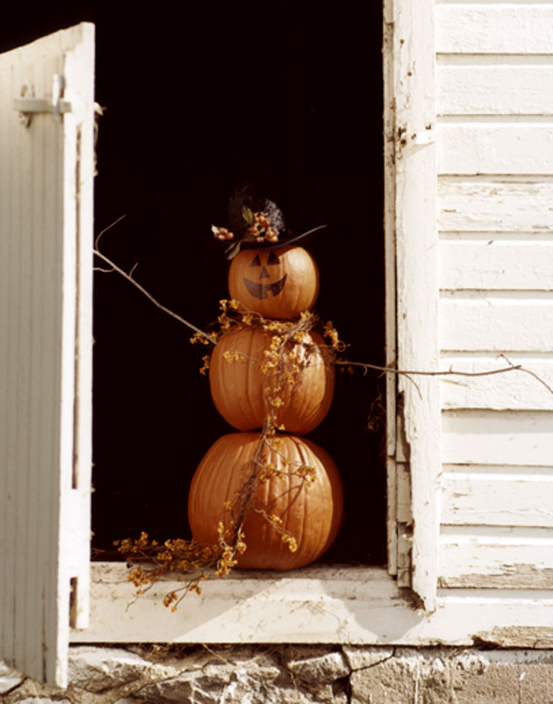 Autumn & Fall Decorating Ideas, Shabby Style!