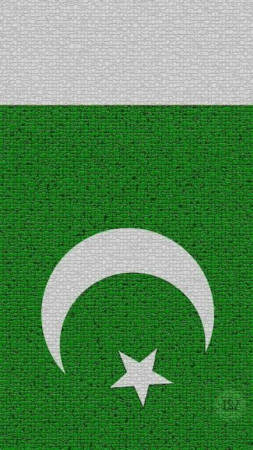 Pakistani%2BFlag%2BHoly%2BDay%2B%252847%2529