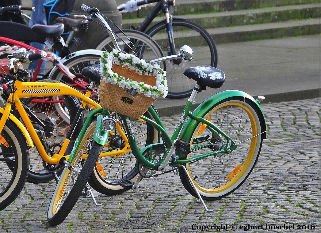 easy rider fahrrad