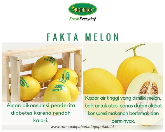 FAKTA MELON