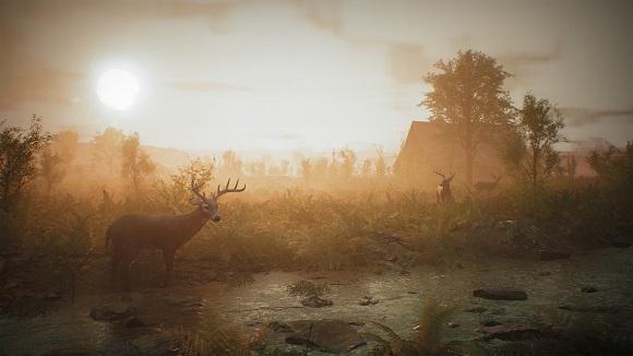 morels-the-hunt-pc-screenshot-3