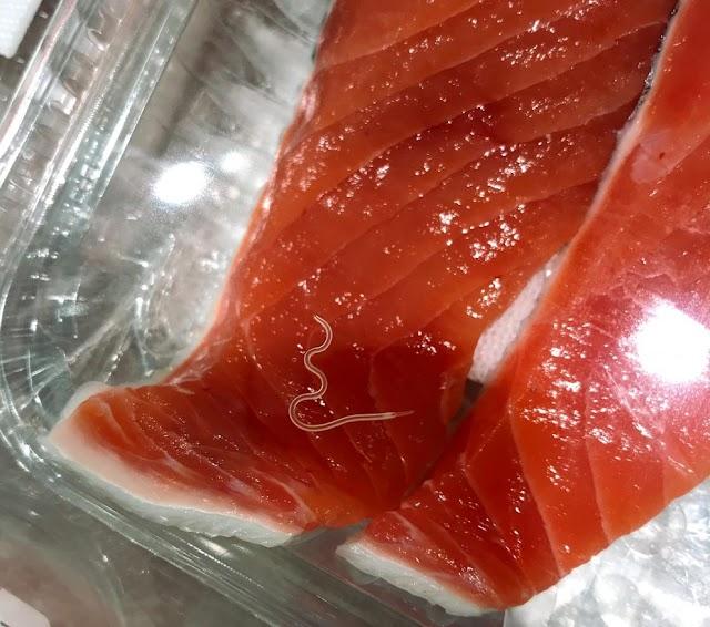Τα παράσιτα στα ωμά ψάρια έχουν αυξηθεί δραματικά