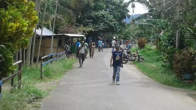 Listriki 191 Desa di Papua, Jokowi Sebut Ini Soal Keadilan