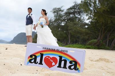Hawaiian Souvenir