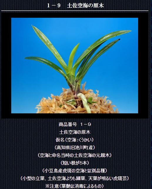 http://www.fuuran.jp/1-9.html