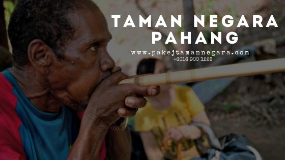 Pakej Taman Negara 2021 , Aktiviti Taman Negara Pahang