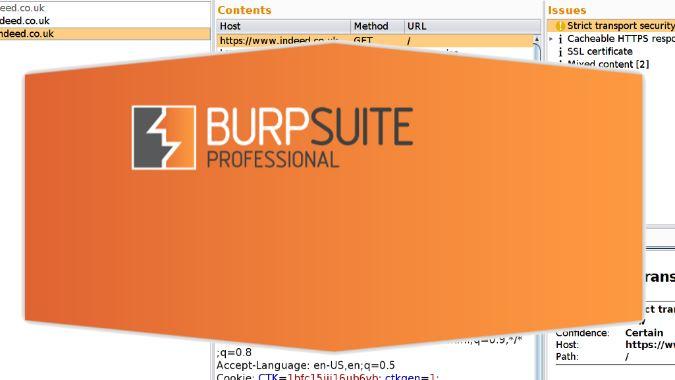 burp suite pro v2.0.11 & keygen