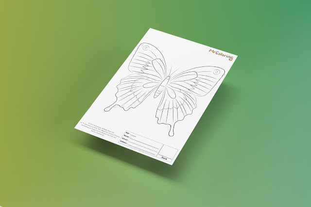 Free Printable Butterfly Template Coloriage Outline Blank Coloring Page pdf For Kids Pictures To Print Out Fun Colouring Pages Kindergarten Preschool Toddler sheet3