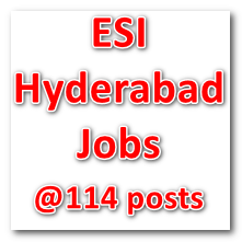 ESI Hyderabad Jobs