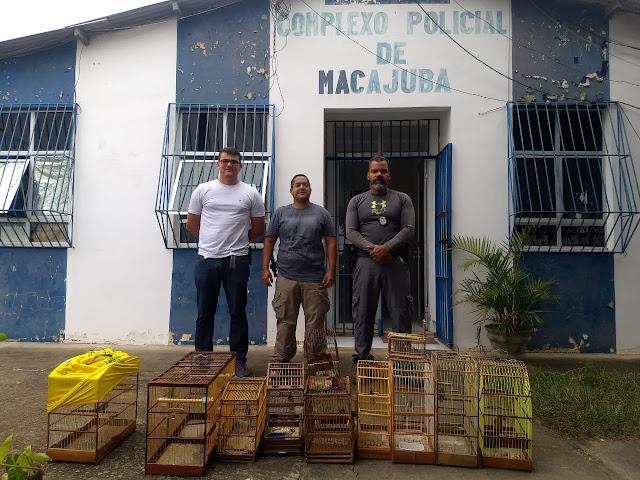 Agentes da Polícia Civil de Macajuba captura gaiolas com pássaros
