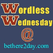 http://bethere2day.com/wordless-wednesday-tuesday-maturity/