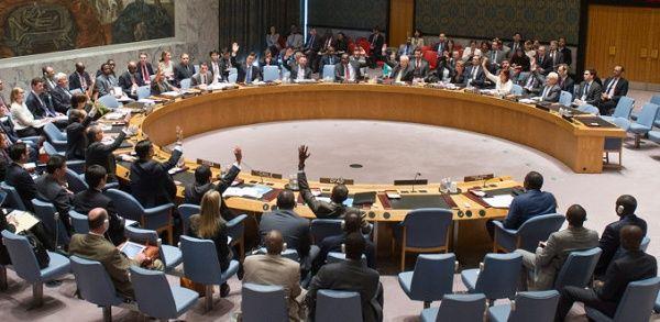 Bolivia es desde hoy miembro del Consejo de Seguridad de la ONU