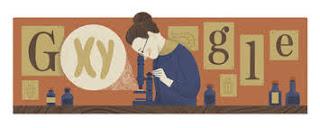 Nettie Stevens: doodle di Google decidato alla scienziata dei cromosomi sessuali