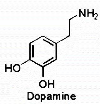 recapture de la dopamine
