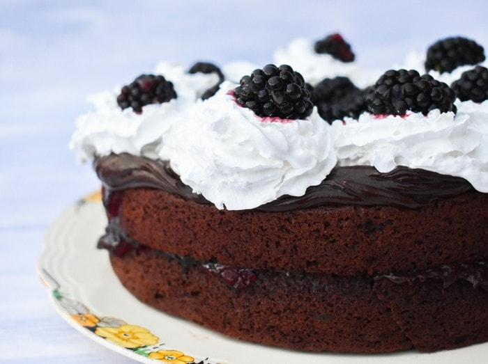 Quick Blackberry Chocolate Cake topped with chocolate frosting, whipped cream and fresh blackberries