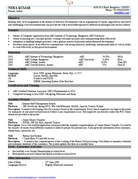 resume in hindi word format