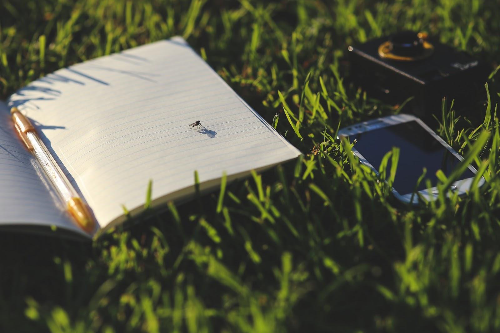 Schrijfoefeningen voor wanneer je een half uurtje tijd hebt