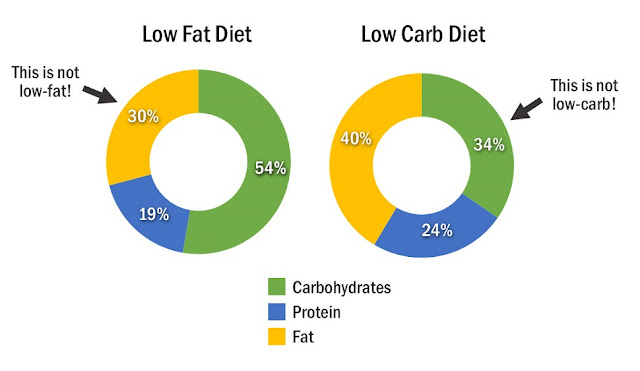 What Can You Do About Low Carb Vs Low Fat Diet Right Now