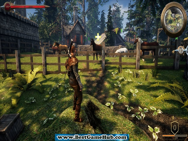 Animal Rescuer Turquoise Revival Games Free Download