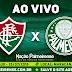 Jogo Fluminense x Palmeiras Ao Vivo 25/07/2018