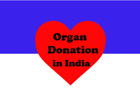 Organ Donation in India - Process and Facts