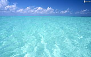 Bolygónk, a Föld: Sekély tengerek (teljes film)