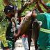 Pesca Solidária no Parque da Lagoa resulta em doação de peixes para entidades e comunidade rural